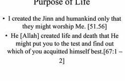PURPOSE OF LIFE