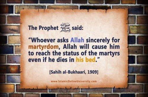 Is a person who died through cancer a Shaheed? – Jamiatul