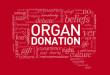 Renal transplant; kidney donation