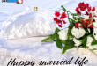 life_married