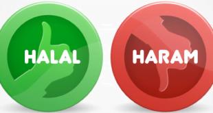 halal-or-haram