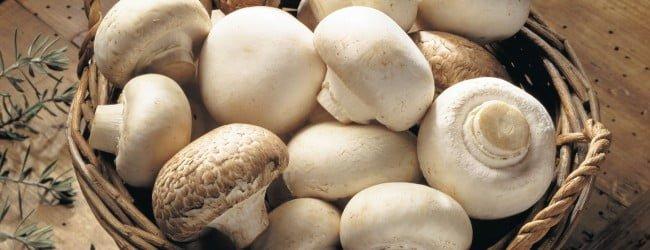 mushroom-basket-650x250