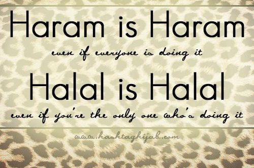 Halaal Earnings