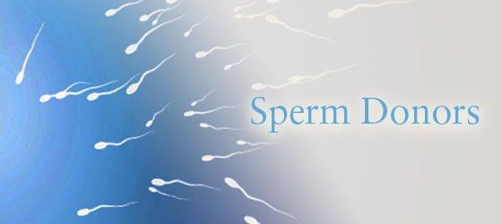 sperm-donor