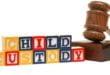 Child Custody Epidemic